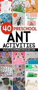 Ant Activities for Preschoolers