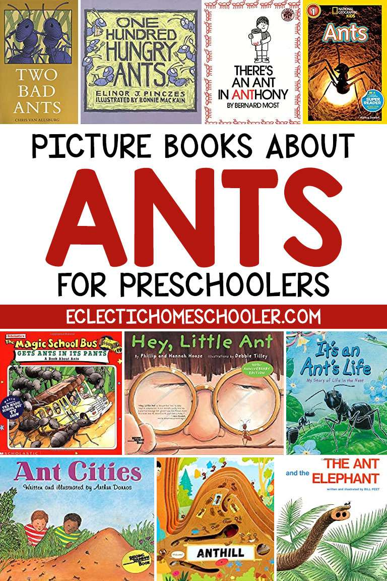 Picture Books About Ants for Preschoolers