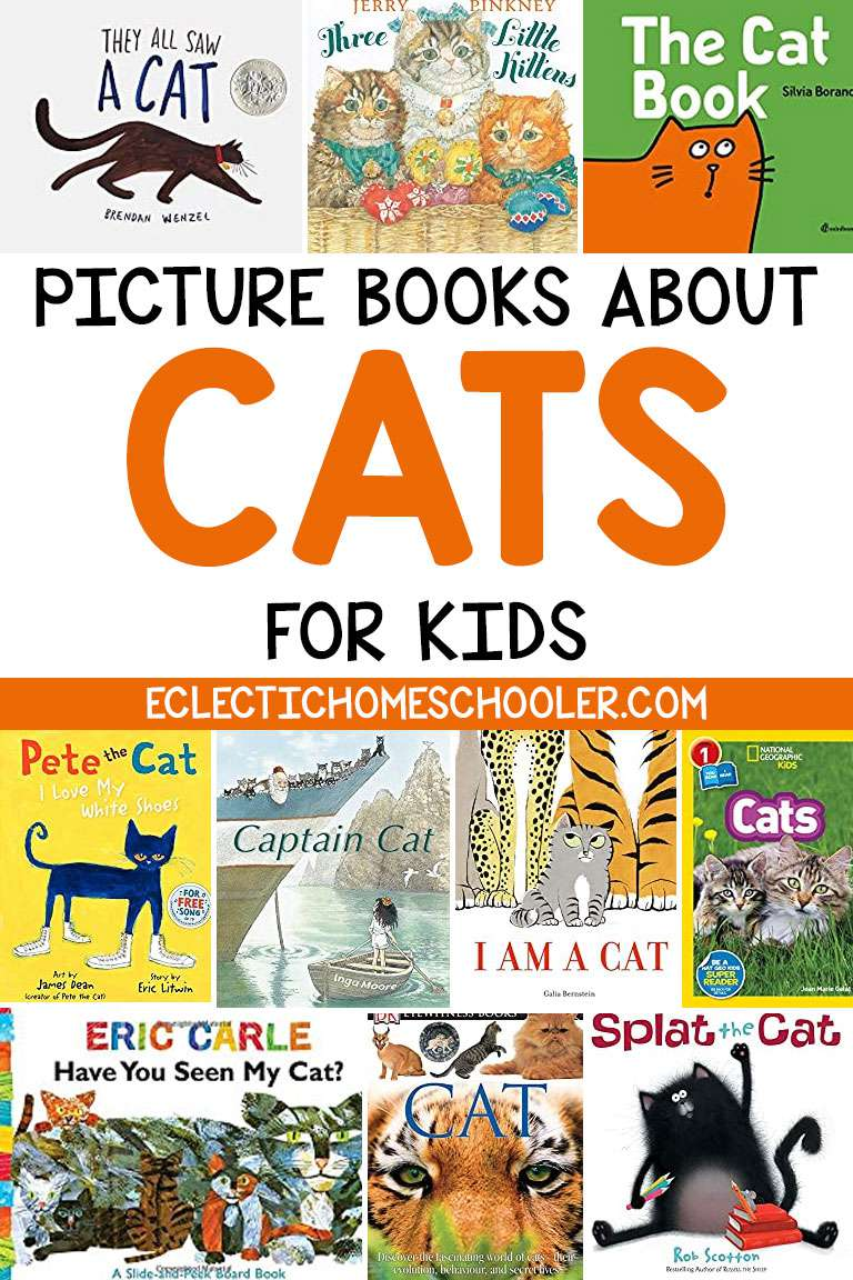 Picture Books About Cats for Children