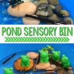 Frog Pond Sensory Bin