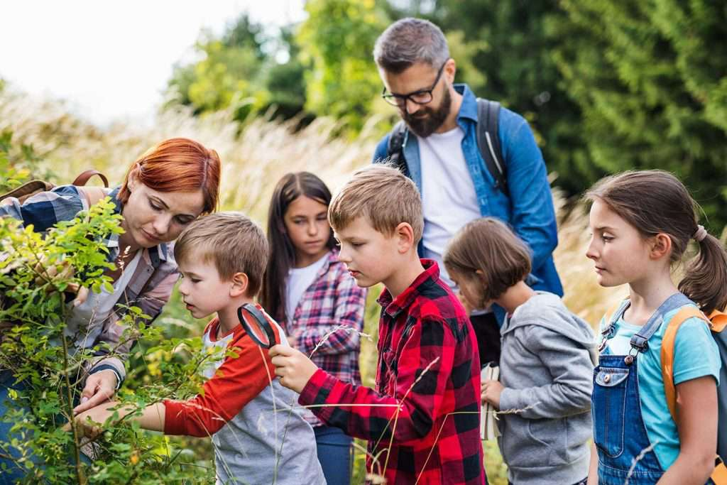 Find Homeschool Co-Ops and Groups