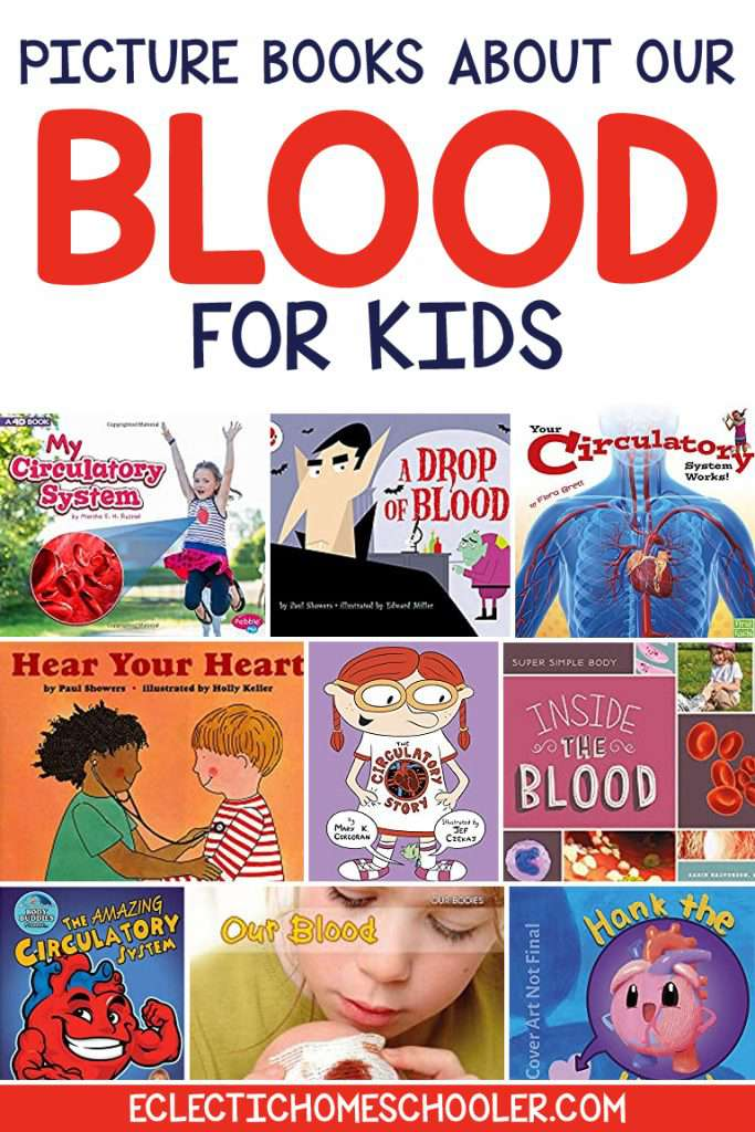 Picture Books About Our Blood for Kids