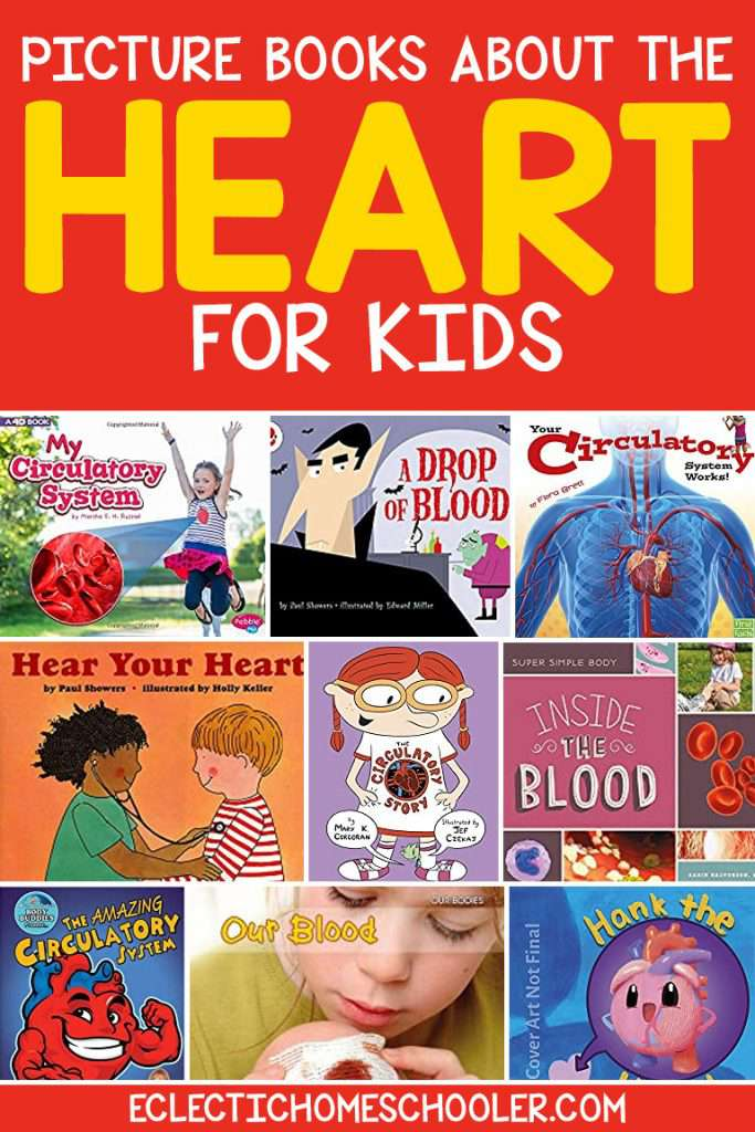 Picture Books About The Heart for Kids