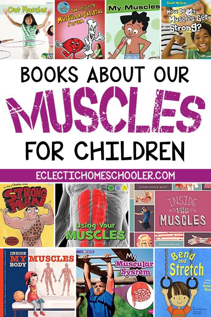Books About Our Muscles For Children