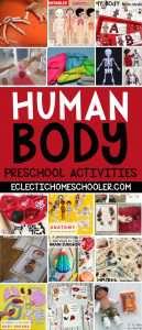 Human Body Preschool Activities